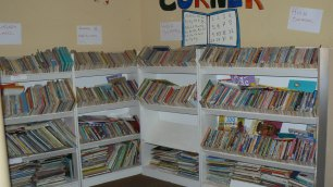 A well-established library - our aim for every school